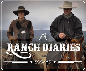 Ranch Diaries