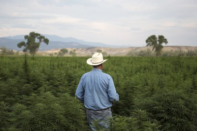 What the 2018 farm bill means for the West