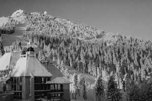Are nonprofit models an answer for small ski areas?