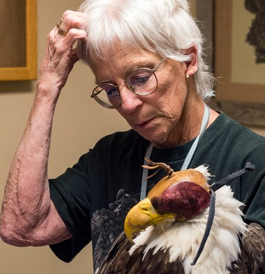 Wyoming's 'Bird Lady' offers a haven for injured birds