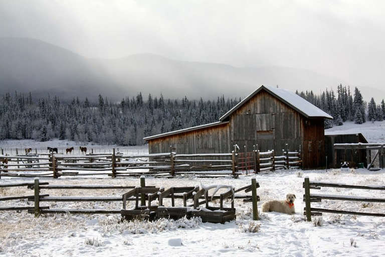 A memoir of sorrow and grace — High Country News