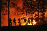 Female firefighters threaten to sue the Forest Service — again