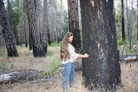 Climate change looms large over Obama's Yosemite visit