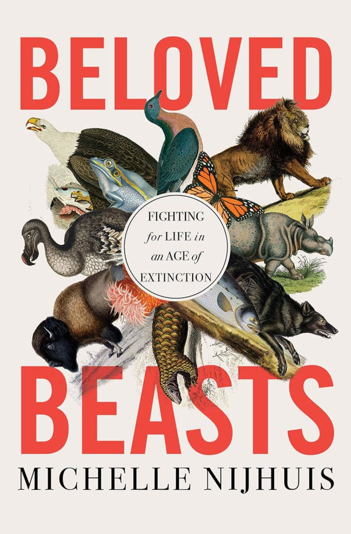 beloved-beasts-cover-edit.jpeg