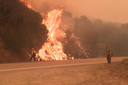 Burn out: Frequent fires are changing Western landscapes