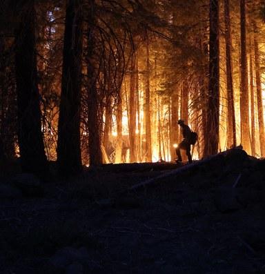 How arson factors into California's wildfires