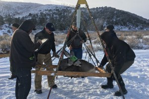 Colorado's controversial plan to kill predators