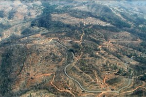Congress tries to speed up contentious post-fire logging