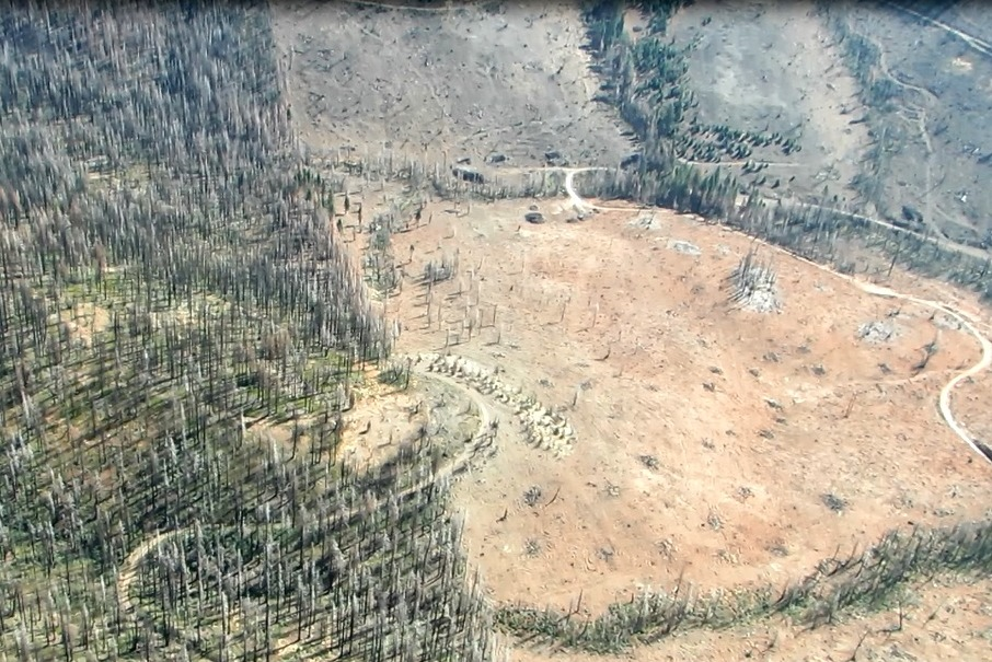 Aerial of Rim fire logging