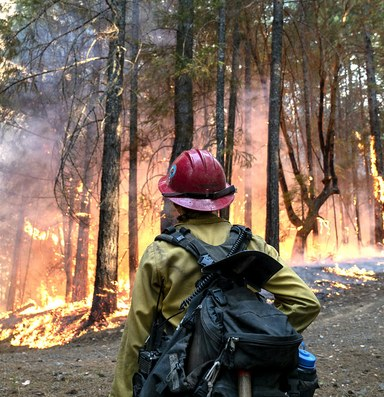 Are wildland firefighters at a greater risk from COVID-19?