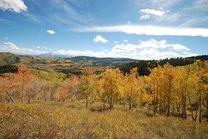 BLM may cancel oil and gas leases in Colorado's Thompson Divide