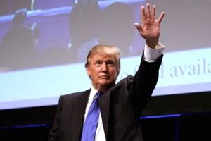 Trump's Cabinet choices reflect deep Koch influence