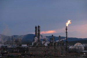 "Environmental lawsuits found to have ""limited"" effect on national rulemaking"