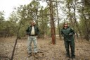 Local woodcutters pitch in on forest health