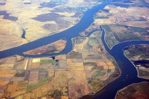 Gov. Brown slashes Sacramento Delta environmental protection