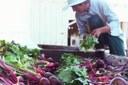 USDA announces new grants to reduce 'grain drain'