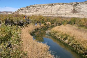 Groups sue Wyoming over 'data trespassing' law