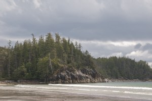How British Columbia's coastal people fertilized the forest