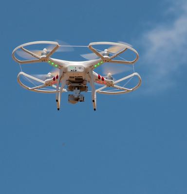 Illegal flights persist despite national park drone ban