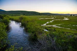 How collaboration can save the Colorado River