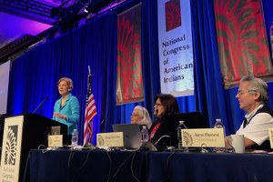 Elizabeth Warren's empty platitude over Native ancestry