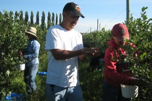 Guest farmworkers find their voices in Washington state