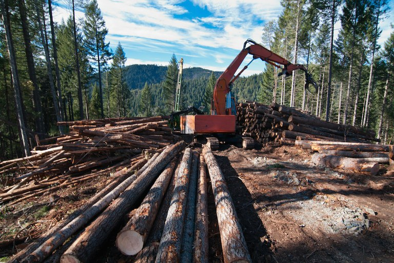 Oregon's monuments need protection from logging — High Country News
