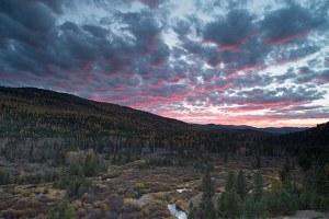 Landscape-scale conservation gains ground