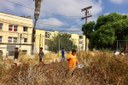 Students explore nature in what used to be a parking lot