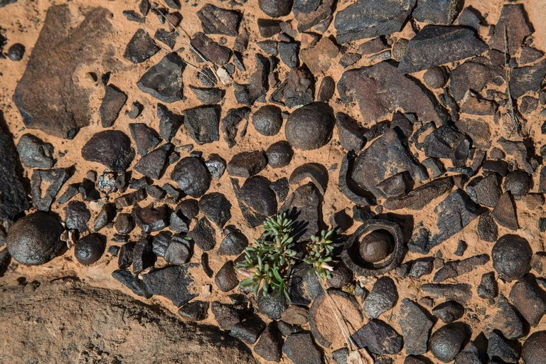 pebbles-1-jpg