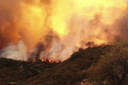 Wildfires spark where growth is sprawling