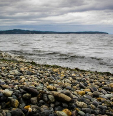 New report: West Coast waters face double threat