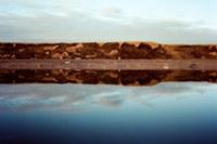 Oil lease sale for Alaska's Arctic National Wildlife Refuge draws few bidders