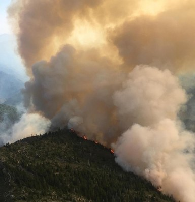 Close encounters with a scary fire season