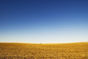 As the Great Plains disappear, a path to better farming