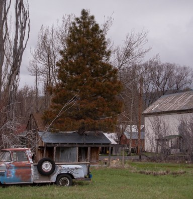 An agricultural community that embraces its artistic side