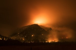 Channel your wildfire angst into climate change action