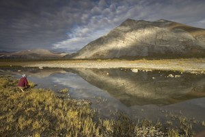 Tell Interior not to sell off the Arctic National Wildlife Refuge
