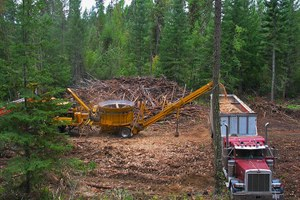 Oregon's energy plan offers a glimmer of hope for biomass energy