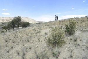 Uranium pervades homes on and near Navajo Nation