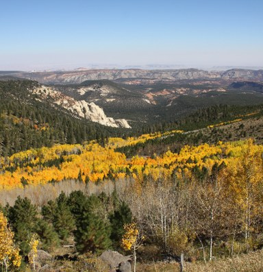 Utah asks for exemption from Forest Service roadless rule