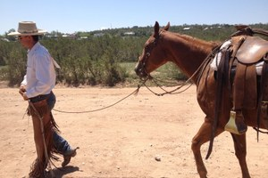 Ranch Diaries: Trusting your horse on ice and in quicksand