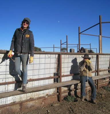 Ranch Diaries: Getting injured on the job