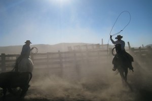 Ranch Diaries: Spared from drought, for now, in New Mexico