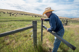 Can grazing help Oregon's largest private nature preserve?