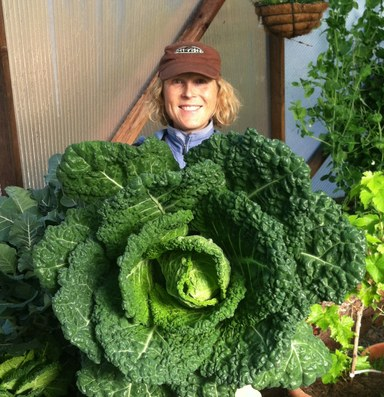 Can food hubs make small farms economically feasible?