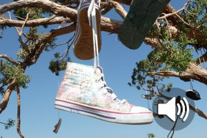 Rantcast: the desert shoe tree