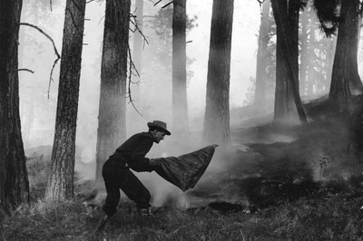 Wildfire suppression is a decades-old conundrum
