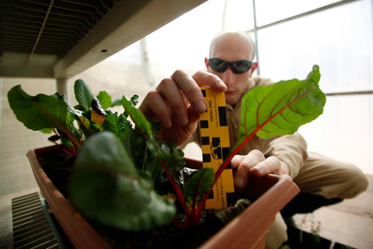 Hans Van 't Woud, a mapping researcher and the health and safety officer of one MDRS research crew, checks on plants grown at the facility in March. Crews live together in a small communication base with limited amounts of electricity, food, oxygen and water. Everything needed to survive must be produced, repaired and replaced on site.