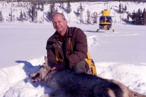 Rocky Mountain wolf recovery leader was not your average bureaucrat
